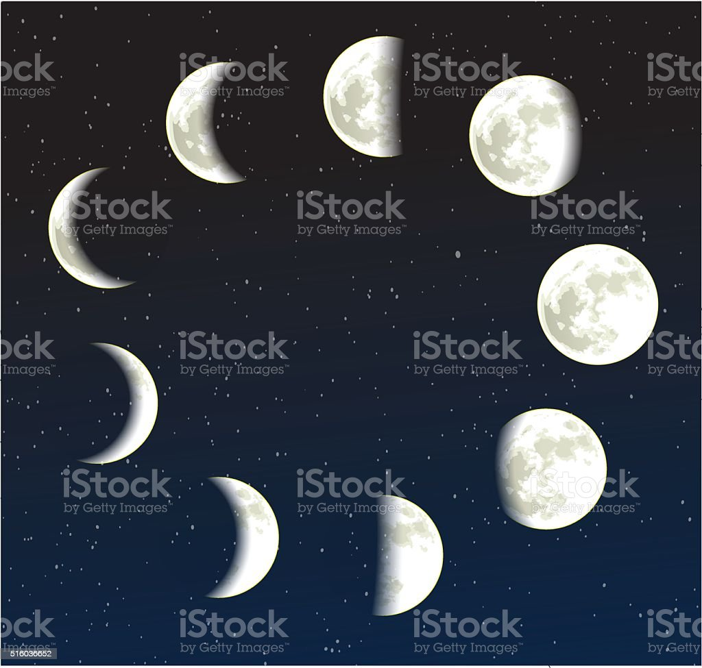 Moon phases vector illustration vector art illustration