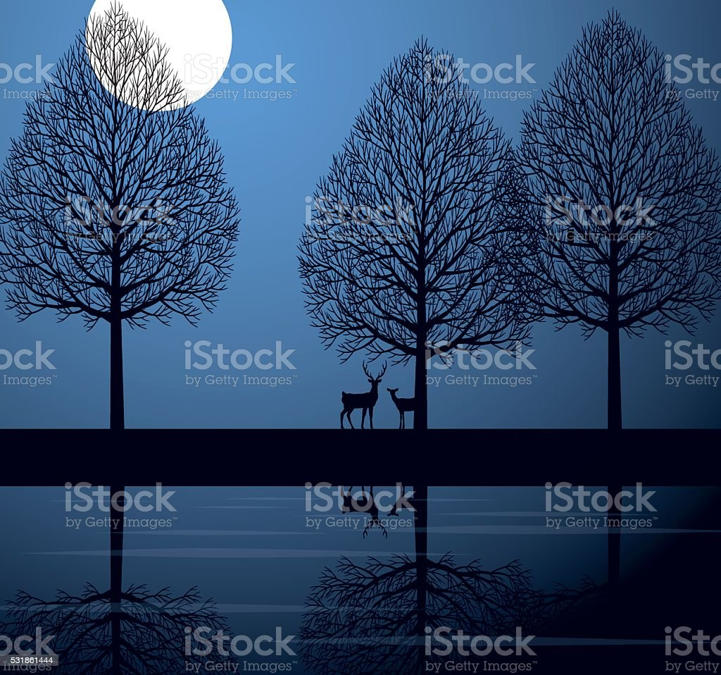 Moonlit night and deer vector art illustration
