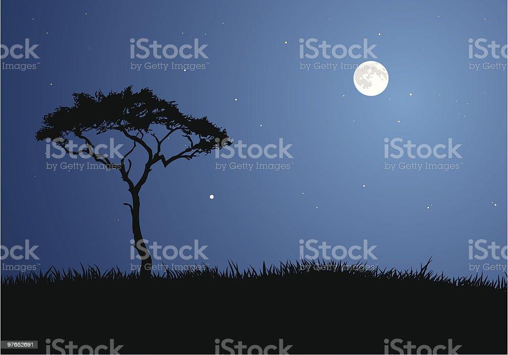 Moonlit Savannah royalty-free stock vector art