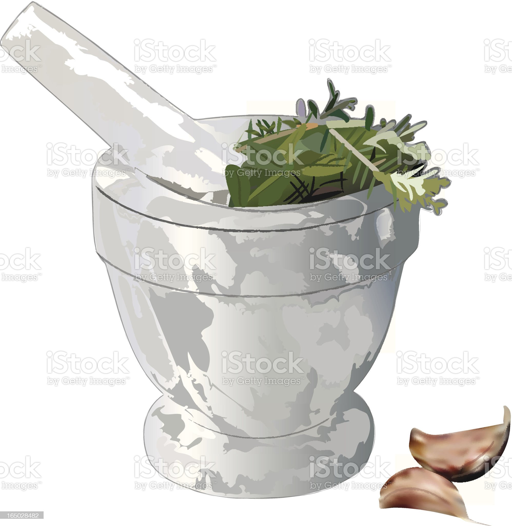 Mortar and Pestle with herbs, garlic royalty-free stock vector art