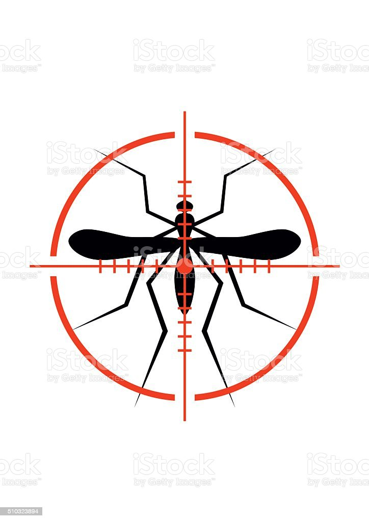 Mosquito and Crosshair. Insect, Culex pipiens isolated on white background. vector art illustration