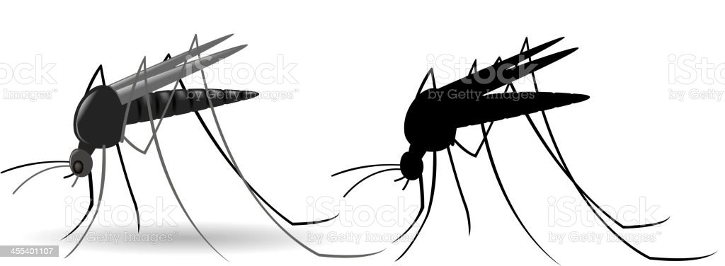 mosquito royalty-free stock vector art