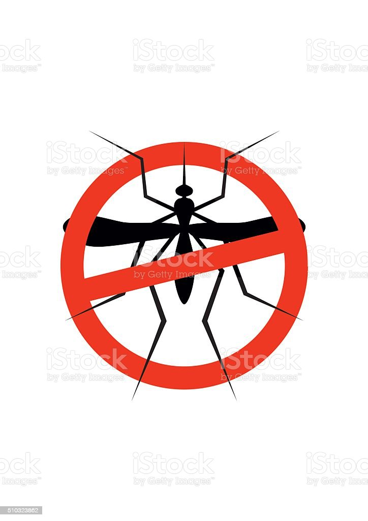 Mosquito warning sign. Insect, Culex pipiens isolated on white background. vector art illustration