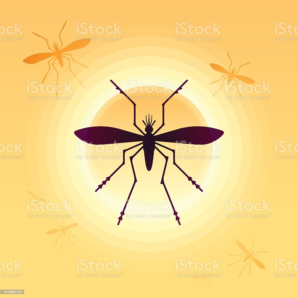 Mosquitos vector art illustration