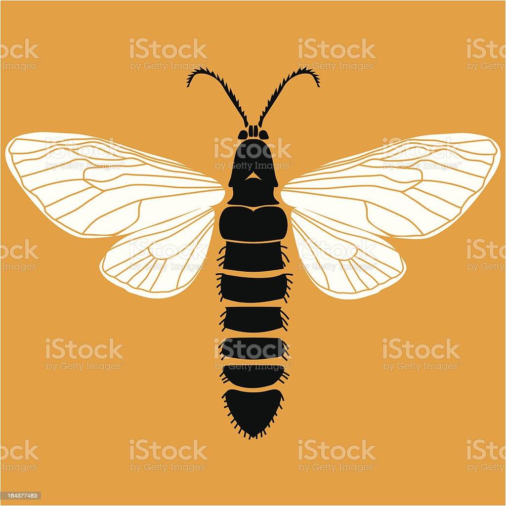 Moth royalty-free stock vector art