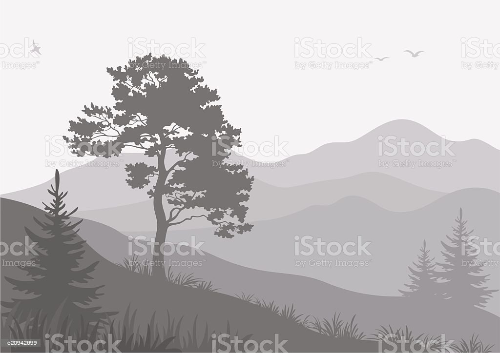 Mountain landscape with trees and birds vector art illustration