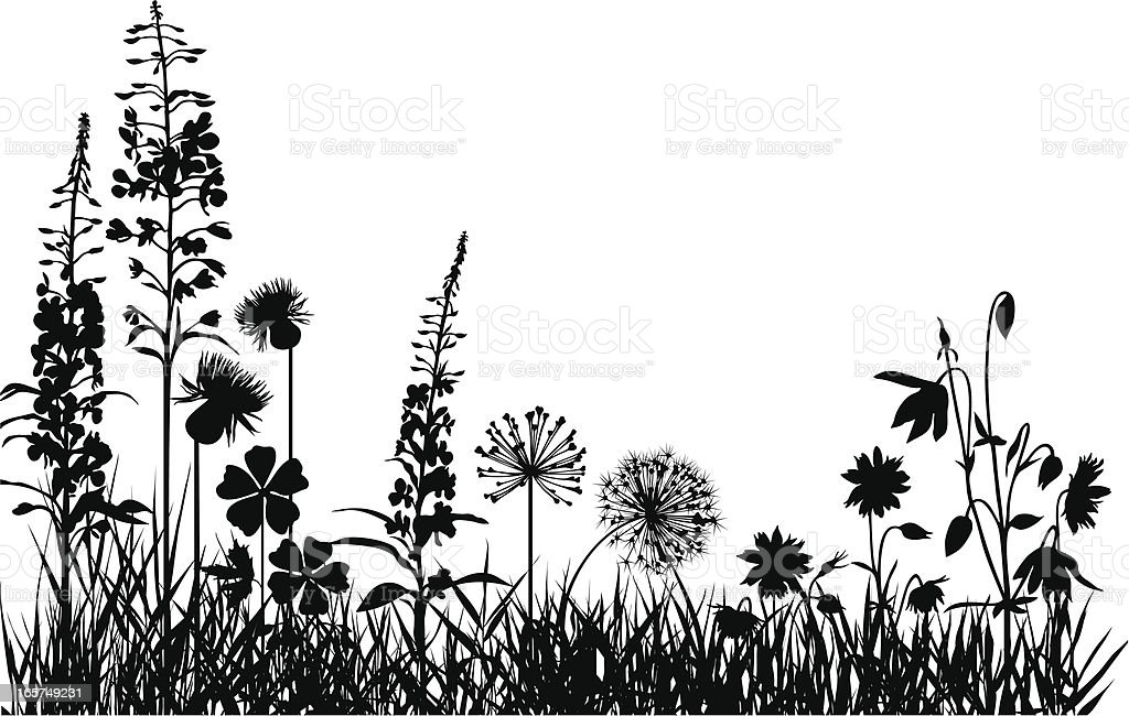 Mountain meadow vector art illustration