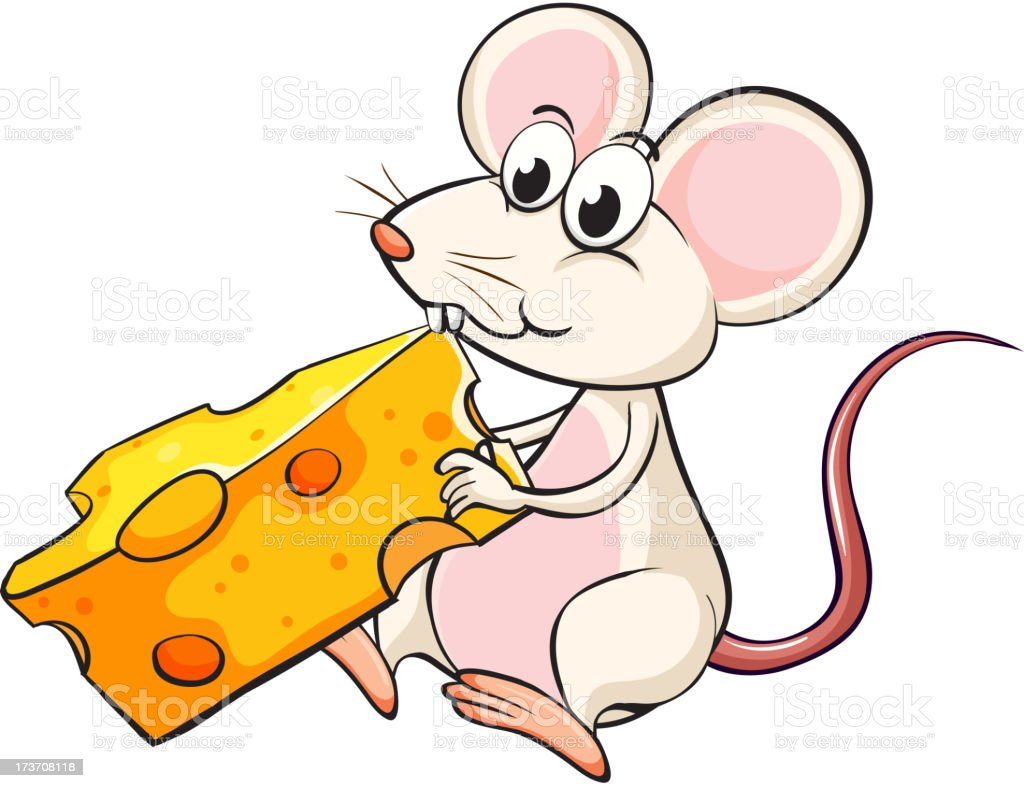 mouse eating cheese royalty-free stock vector art