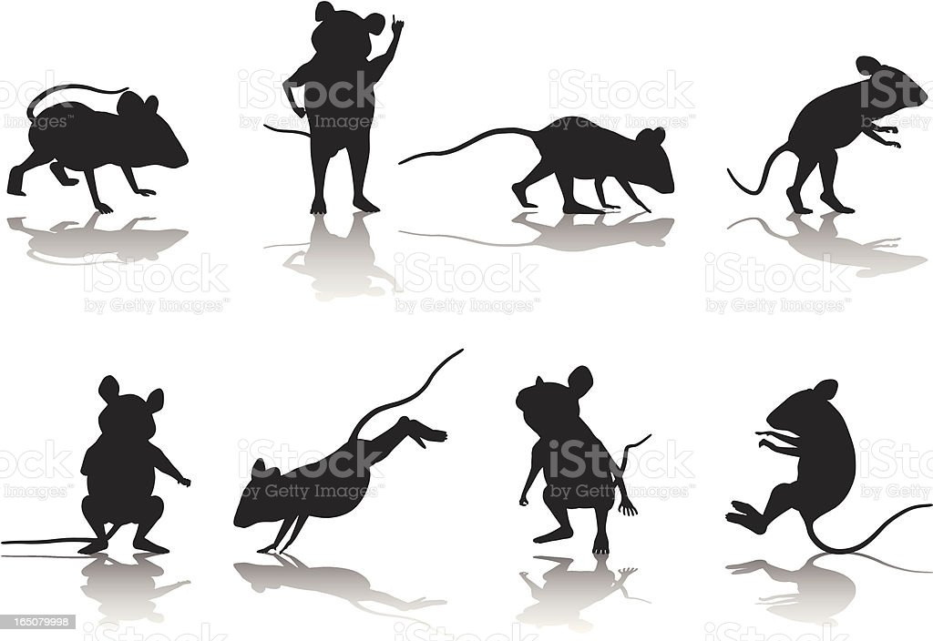 Mouse Silhouette Collection royalty-free stock vector art