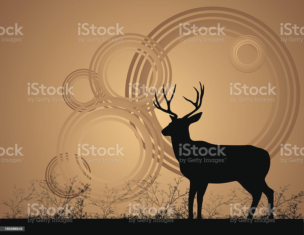 Mule Deer Buck vector art illustration