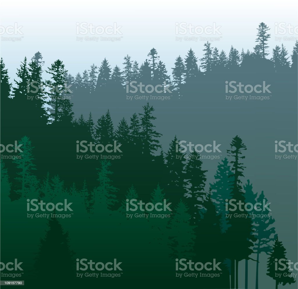A multi shaded green Illustration of a coniferous forest  vector art illustration
