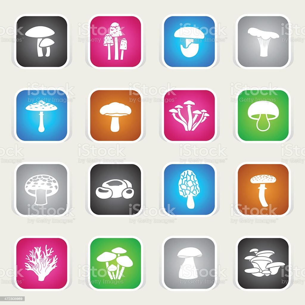 Multicolor Icons - Edible Mushrooms vector art illustration