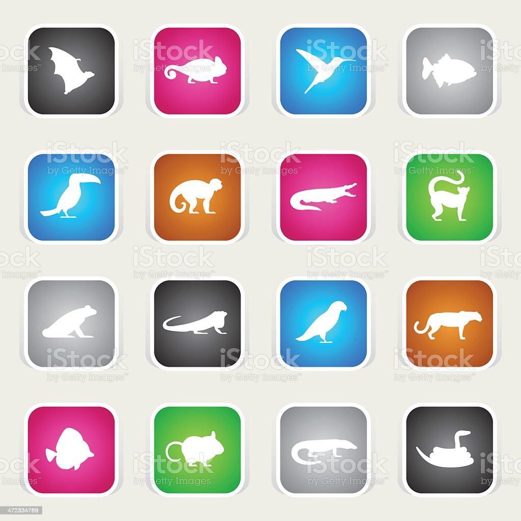 Multicolor Icons - Exotic Animals royalty-free stock vector art