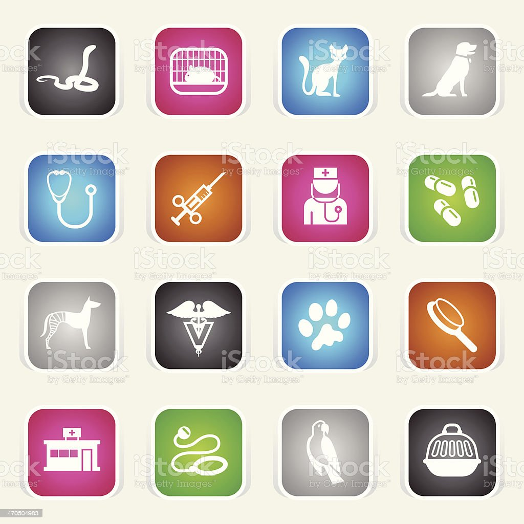 Multicolor Icons - Veterinary royalty-free stock vector art