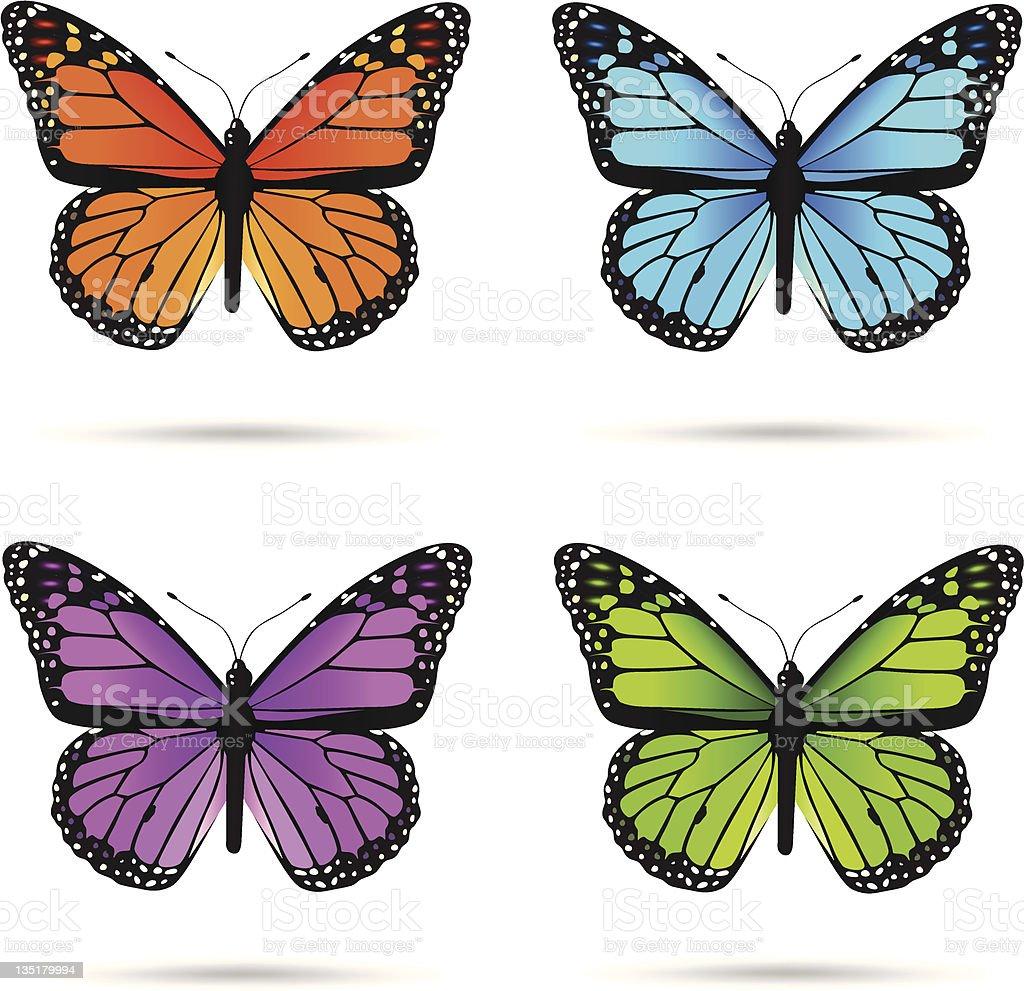 Multicolored butteflies vector art illustration