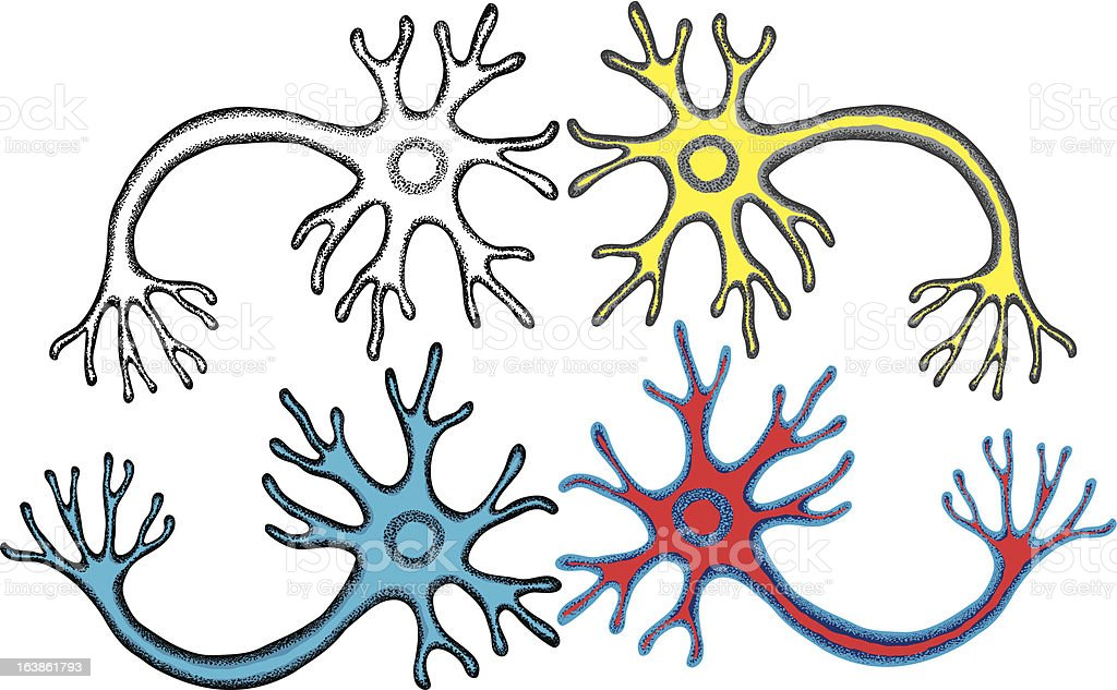 Multipolar Neuron vector art illustration