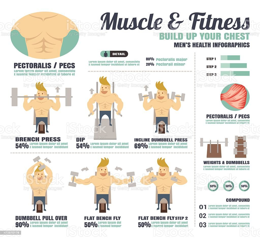 Science Facts Exercise: Muscle Fitnessbuild Up Your Abdominal Muscle Infographics