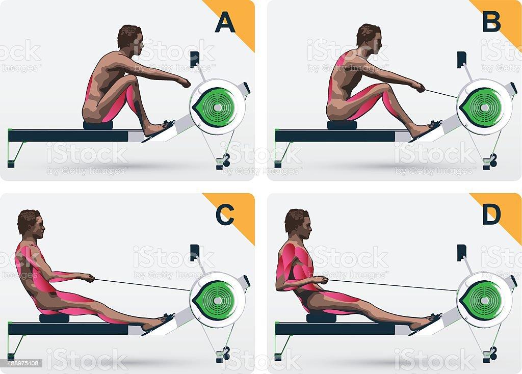 Muscle work on rowing macine vector art illustration
