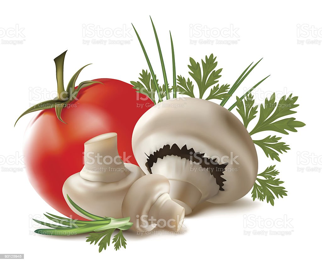 Mushroom champignon fruits with parsley leaves royalty-free stock vector art