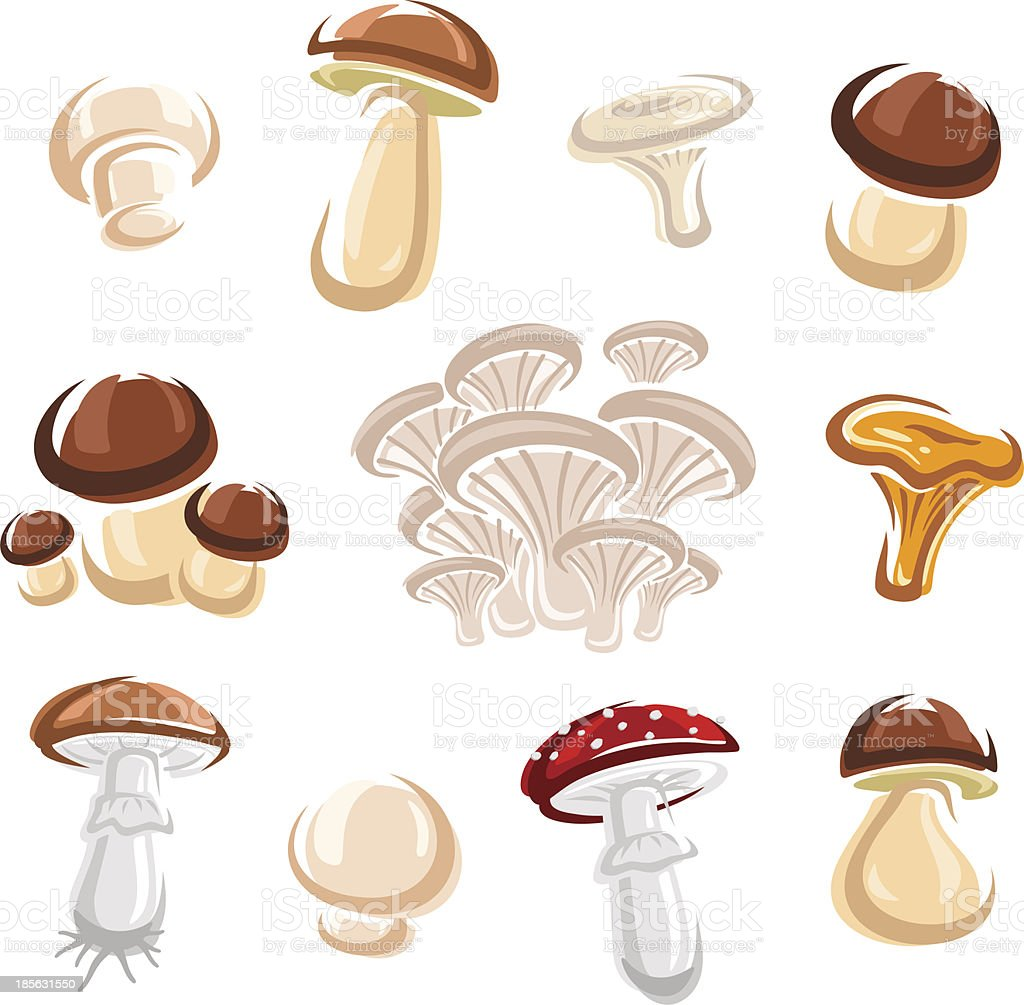 Mushroom set. Vector royalty-free stock vector art