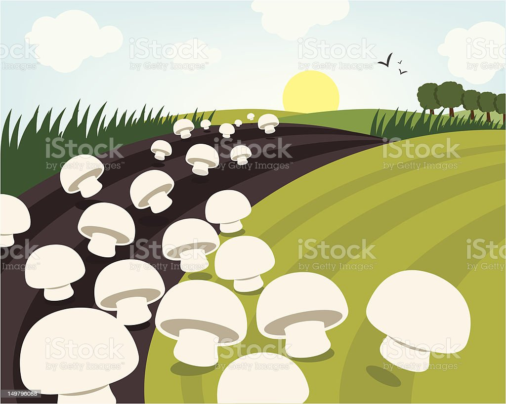 Mushrooms over the hill royalty-free stock vector art