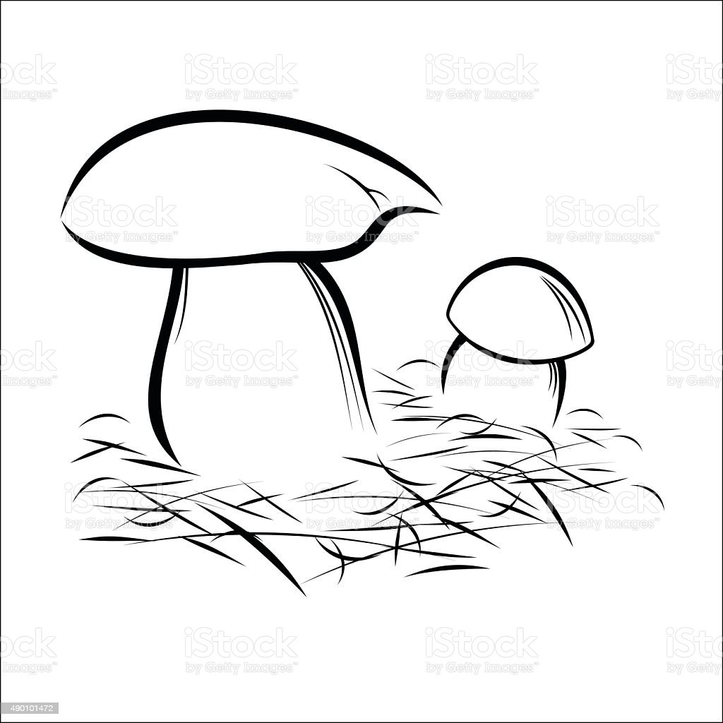 Mushrooms royalty-free stock vector art