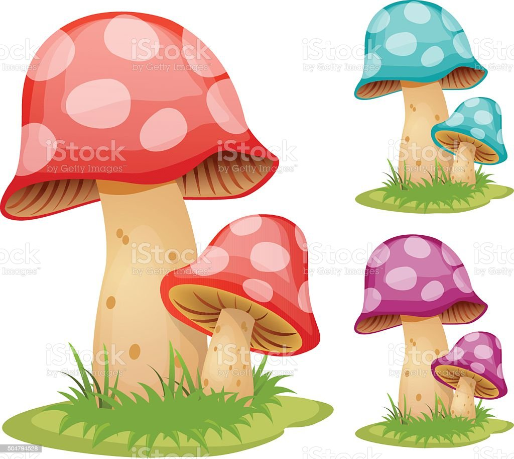 Mushrooms vector art illustration