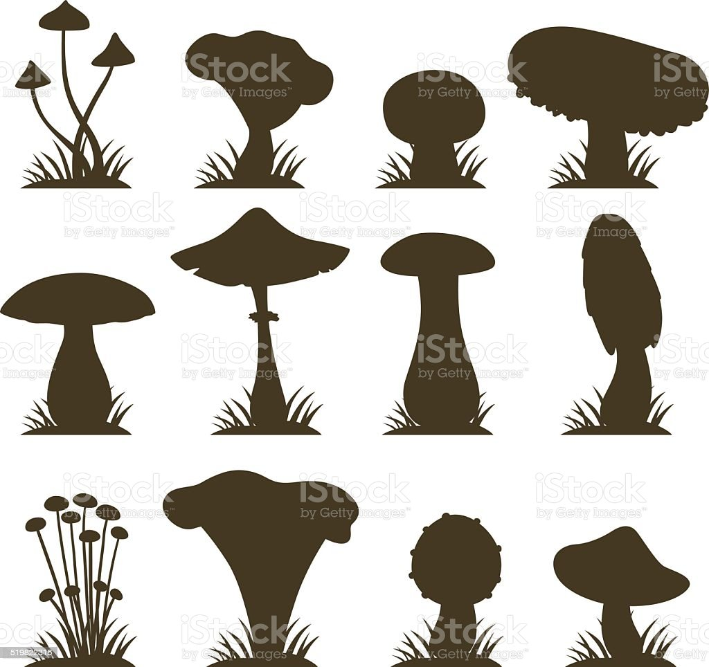 Mushrooms vector illustration set different types isolated on white background vector art illustration