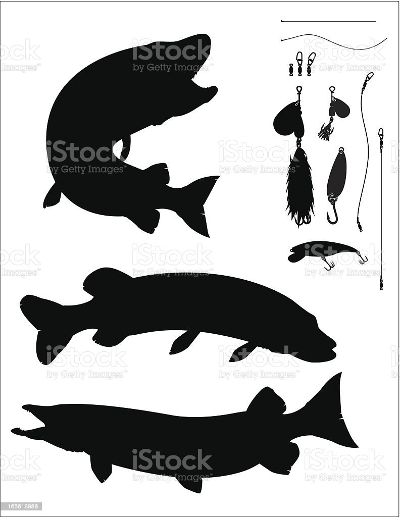 Muskellunge And Pike royalty-free stock vector art