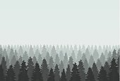 Musterious coniferous forest silhouette template. Vector illustration.