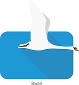 mute swan, cartoon vector illustration