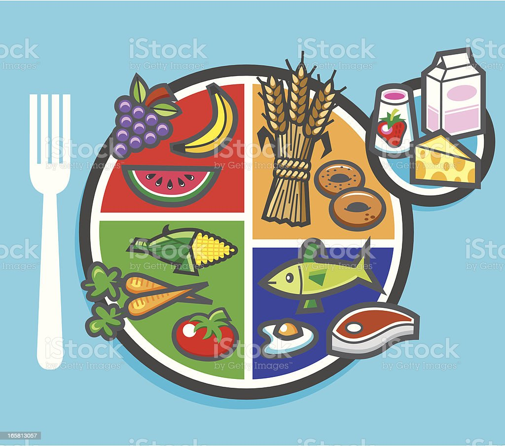 my plate food pie chart vector art illustration