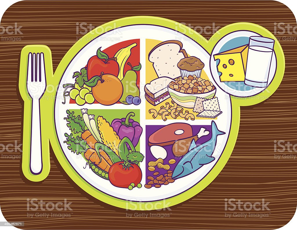 My Plate Food Pyramid royalty-free stock vector art