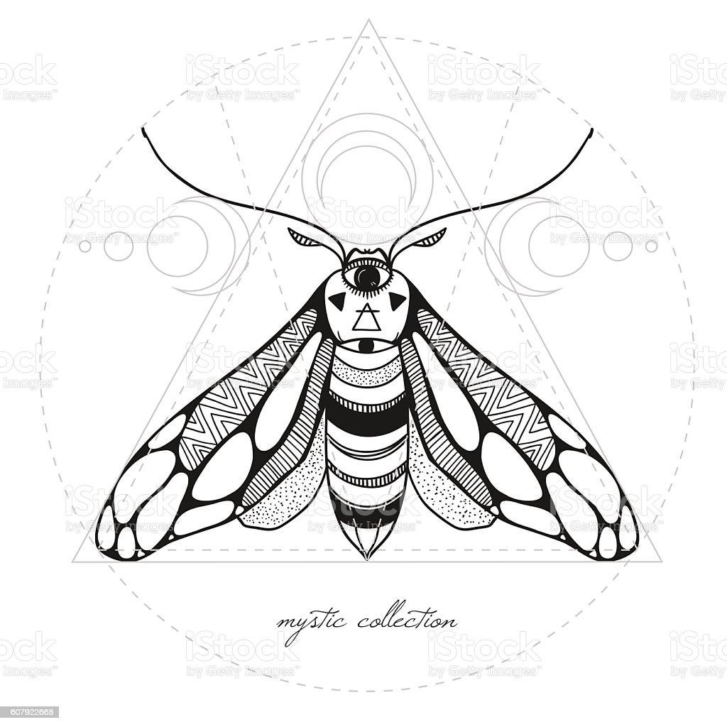 mystic moth vector illustration vector art illustration