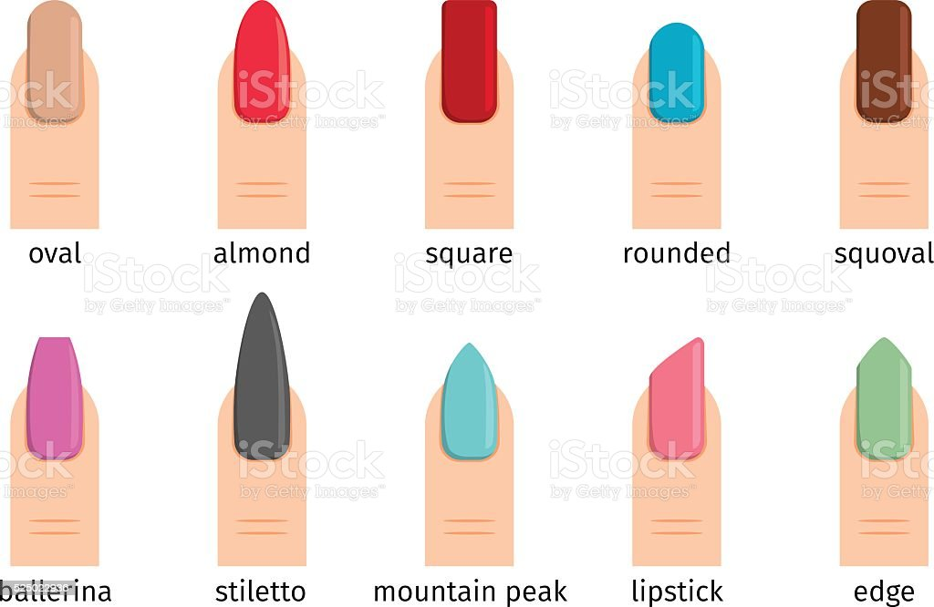 Nail shape icons vector art illustration