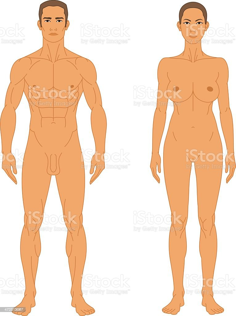 naked anatomical differences men in