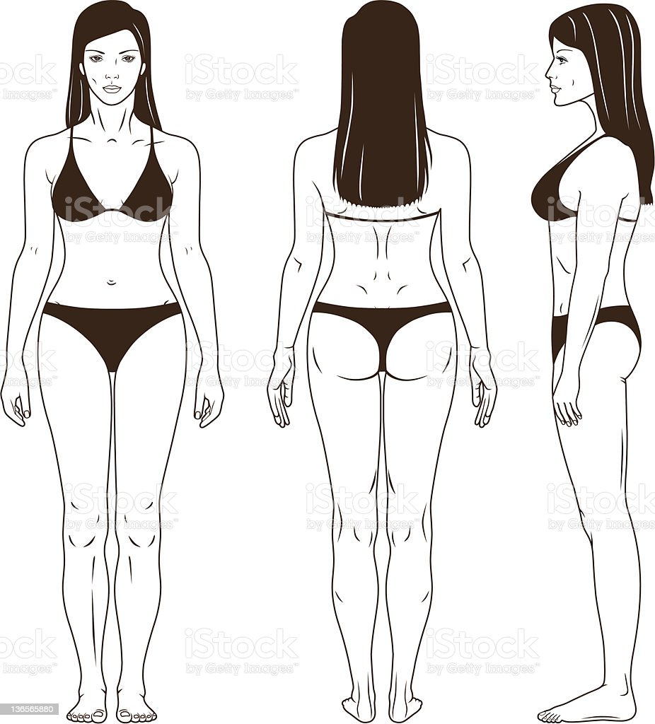 Naked standing woman vector vector art illustration