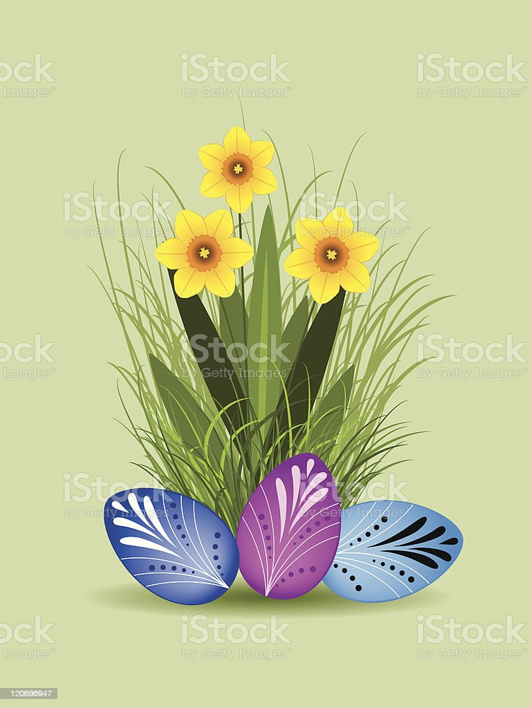 Narcissus and Easter eggs royalty-free stock vector art
