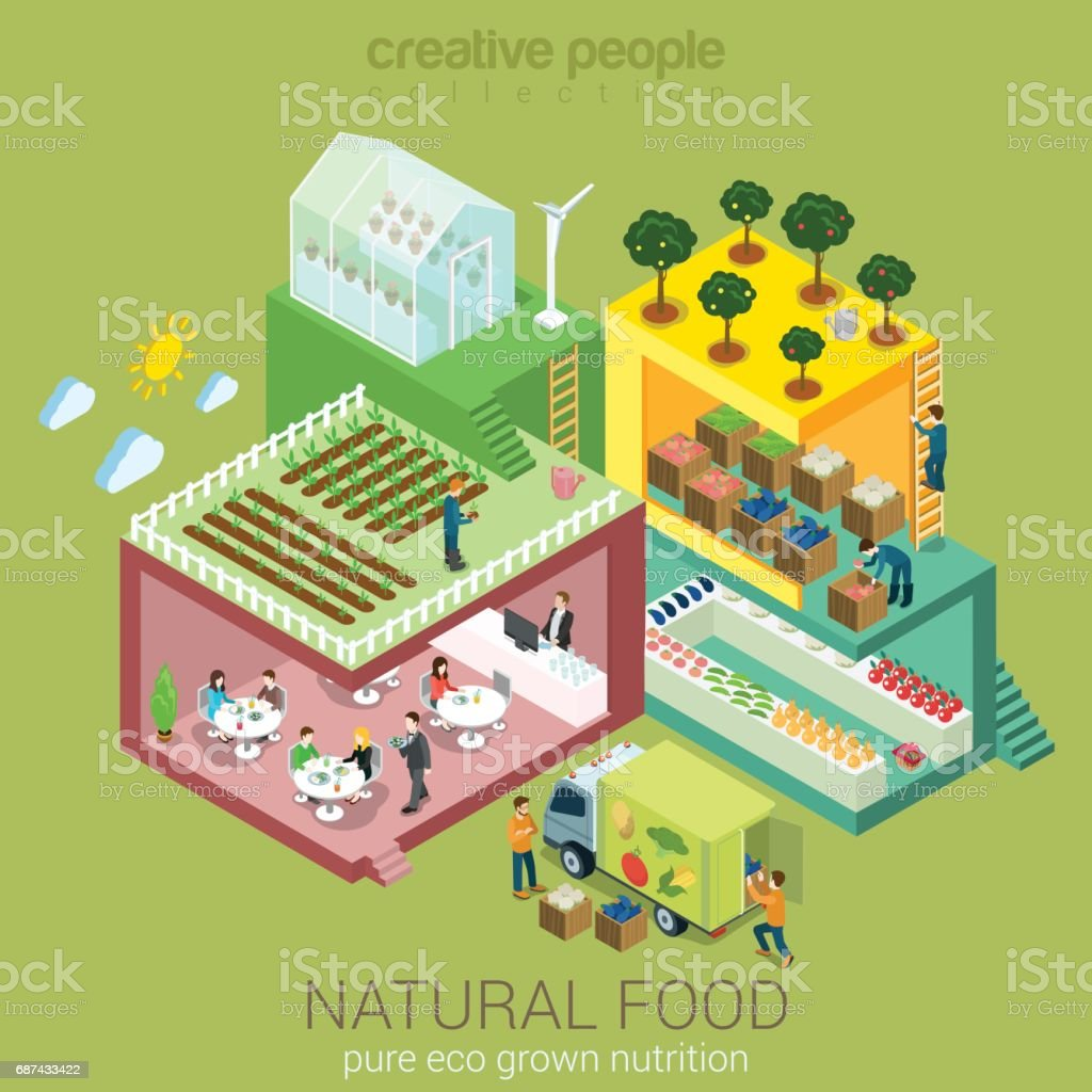 Natural eco food grow harvest market sell cook eat flat 3d web isometric nutrition agriculture infographic vector. Farm field garden greenhouse grocery shop delivery. Creative people collection. vector art illustration