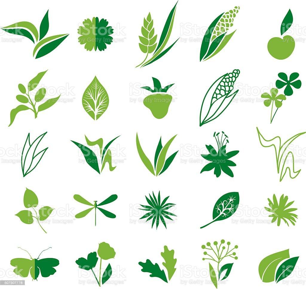 Natural green elements vector art illustration