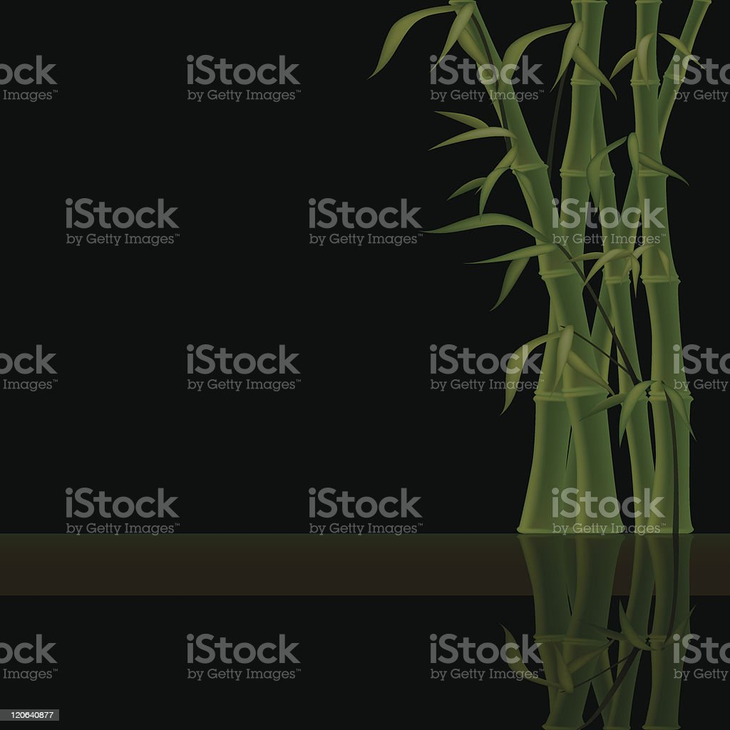 Natural image with green bamboo on black background and reflection vector art illustration