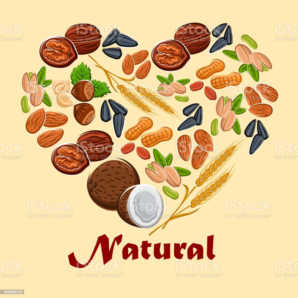 Natural nuts and cereals poster vector art illustration