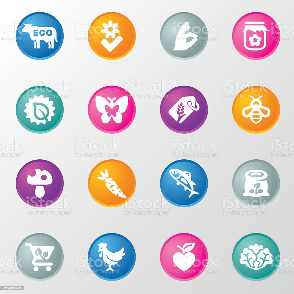 Natural organic product Circle Color Icons vector art illustration