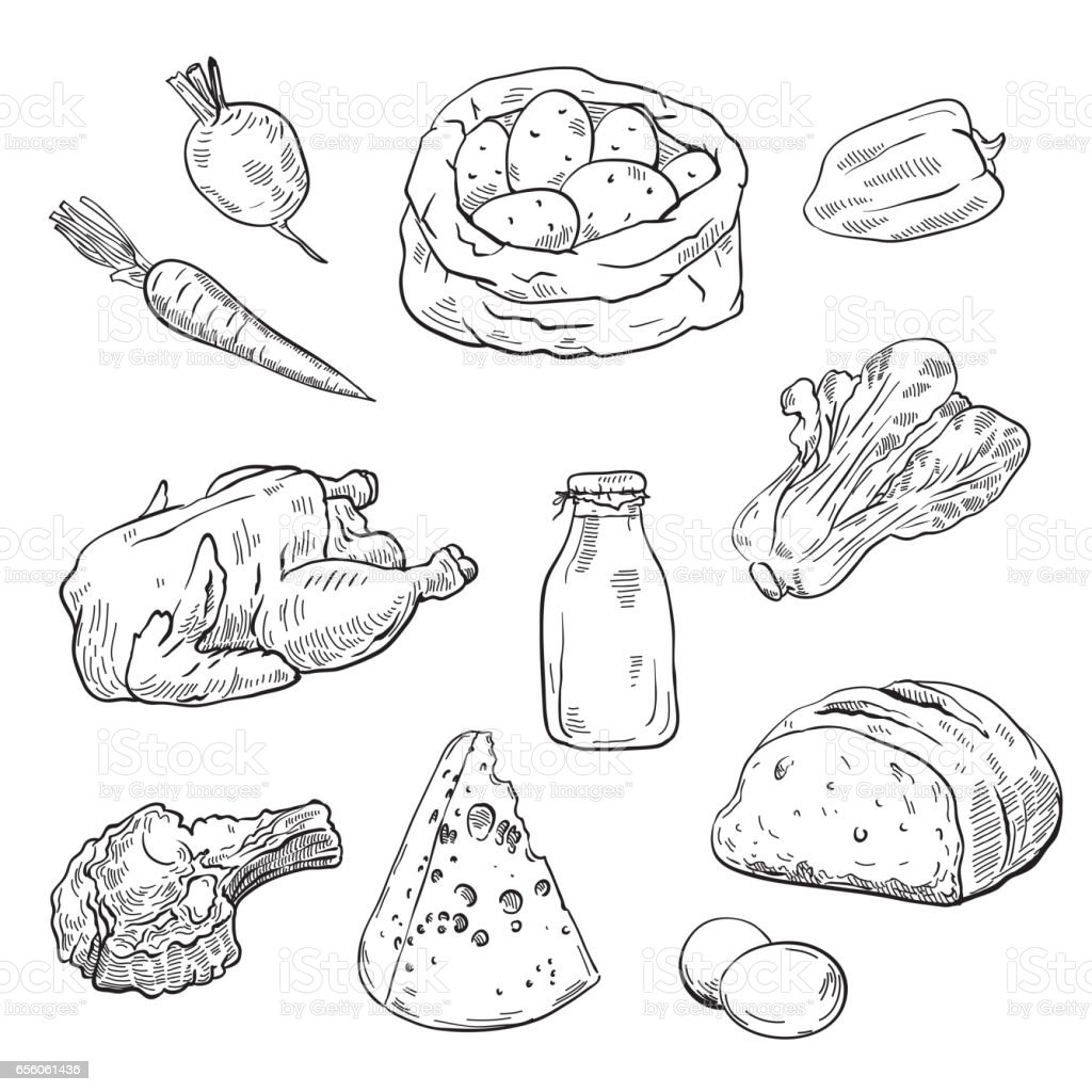 natural products. set of sketches vector art illustration