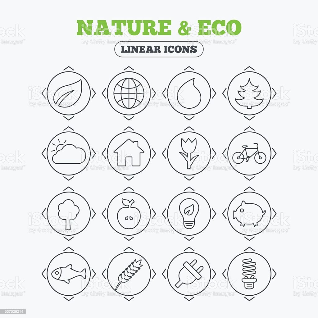 Nature and Eco icons. Trees, rose flower. vector art illustration