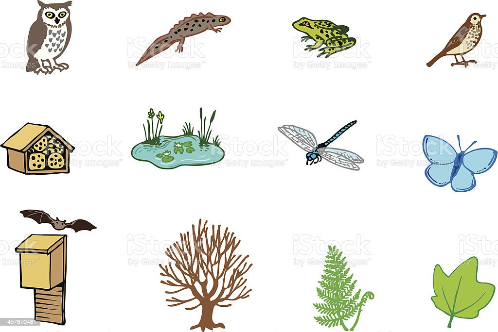 Nature and wildlife reserve vector art illustration