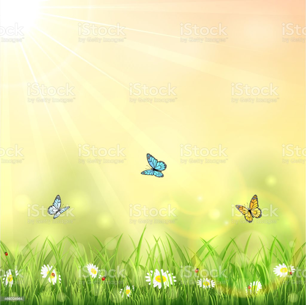 Nature background with butterflies vector art illustration