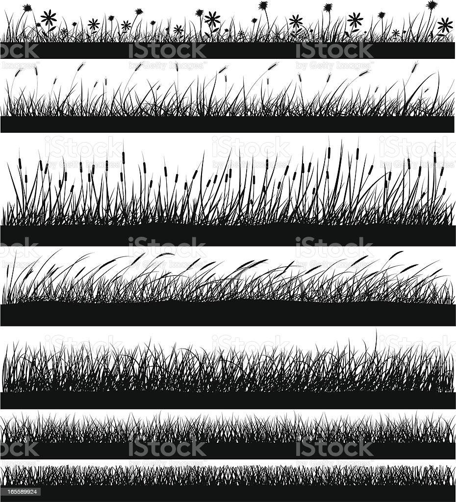 Nature Elements - Grass vector art illustration