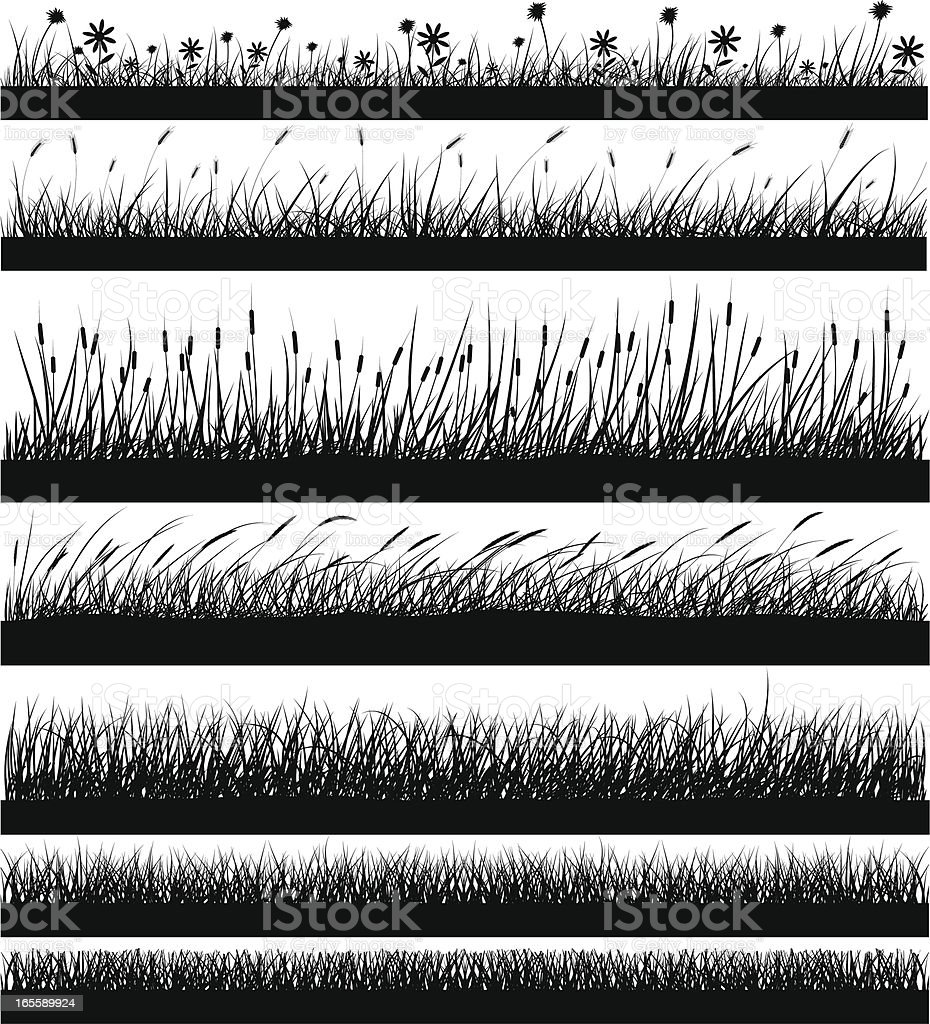 Nature Elements - Grass vector art illustration