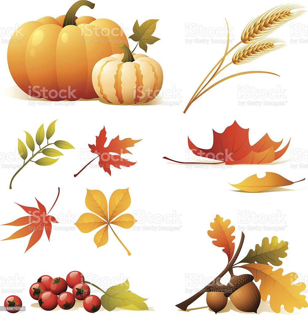 Nature icons relating to autumn vector art illustration